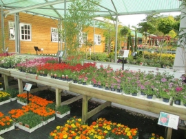 mud-island-garden-centre-gallery-18