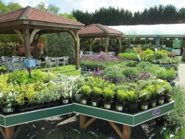 mud-island-garden-centre-gallery-22