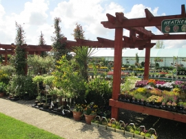 mud-island-garden-centre-gallery-23