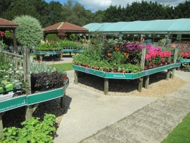 mud-island-garden-centre-gallery-28