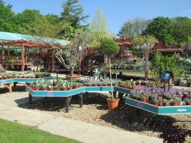 mud-island-garden-centre-gallery-7