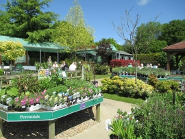 mud-island-garden-centre-gallery-9