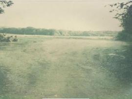mud-island-garden-centre-history-1