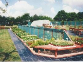 mud-island-garden-centre-history-10