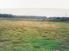 mud-island-garden-centre-history-2
