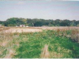 mud-island-garden-centre-history-3