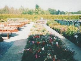 mud-island-garden-centre-history-33