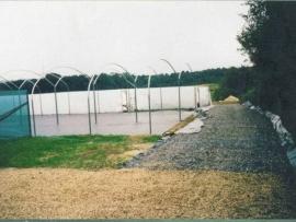 mud-island-garden-centre-history-5
