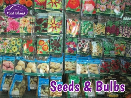 seeds-and-bulbs-1