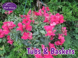 tubs-and-baskets-10