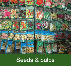 seeds and bulbs