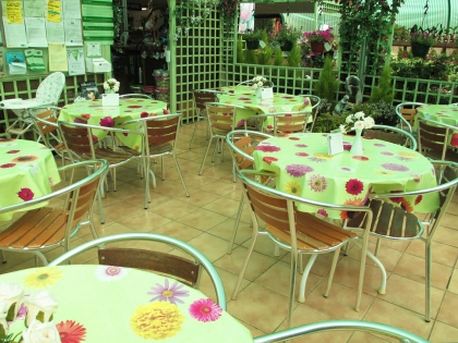 garden-centre-coffee-shop-4