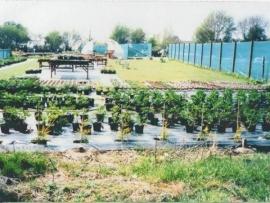 mud-island-garden-centre-history-11