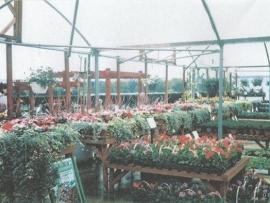 mud-island-garden-centre-history-37