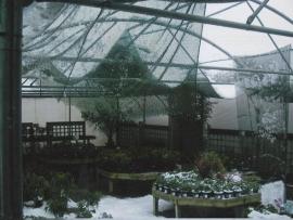 mud-island-garden-centre-history-50