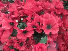 silk-flower-shop-14