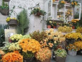 silk-flower-shop-18