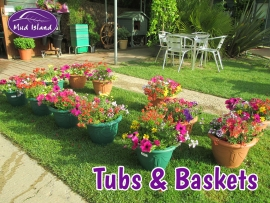 tubs-and-baskets-2