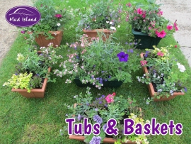tubs-and-baskets-4