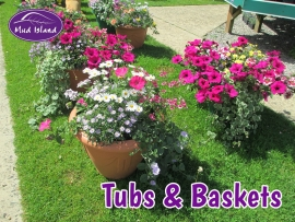 tubs-and-baskets-6
